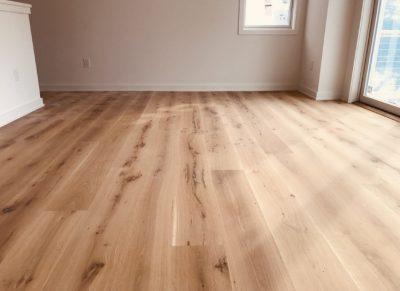 Plank Design